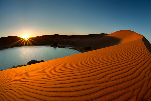Namibia「Desert Oasis and the Red Sand Dunes of Sossusvlei, Namib-Naukluft National Park, Namibia, Africa」:スマホ壁紙(19)