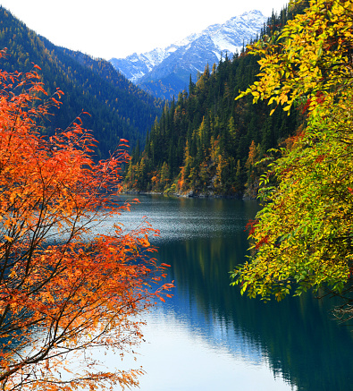 Woodland「Amazing Lake in Autumn Colours」:スマホ壁紙(2)