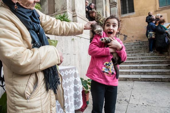 動物「Annual Blessing Of Animals In Sant'Eusebio Church」:写真・画像(4)[壁紙.com]