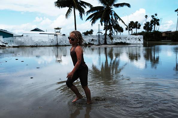 Miami「Powerful Hurricane Irma Slams Into Florida」:写真・画像(14)[壁紙.com]