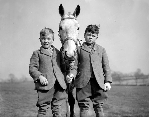 動物「Trainee Flat Jockeys」:写真・画像(11)[壁紙.com]