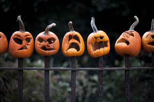 Carving - Craft Product「Row of carved pumpkins impaled on fence」:スマホ壁紙(17)