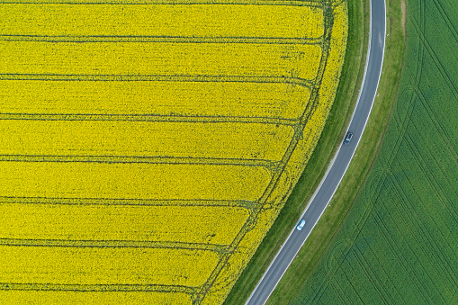 Oilseed Rape「Abstract aerial view of rural road through agricultural fields with oilseed rape field and green wheat field, Franconia, Bavaria, Germany」:スマホ壁紙(3)