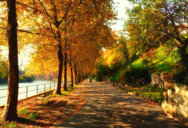 Footpath by the river, Limmat, Baden, Switzerland:スマホ壁紙(壁紙.com)