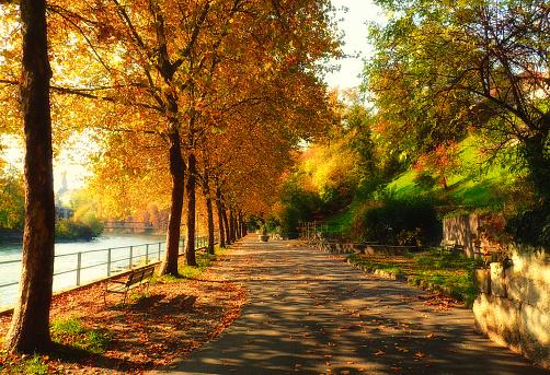紅葉「Footpath by the river, Limmat, Baden, Switzerland」:スマホ壁紙(1)