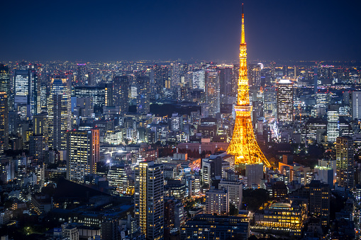 Tokyo Tower「Tokyo Skyline at Night」:スマホ壁紙(17)