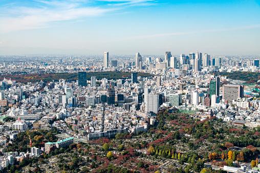 Japan「東京の街並み」:スマホ壁紙(17)