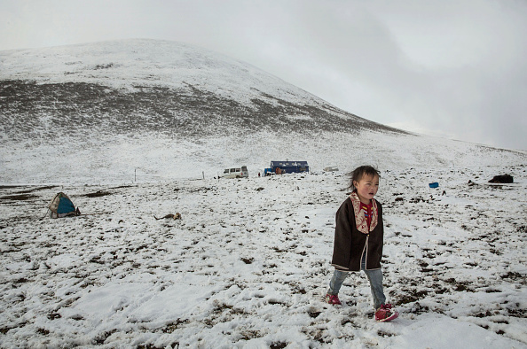 カレンダー「Search For Prized Fungus A Way Of Life On Tibetan Plateau」:写真・画像(17)[壁紙.com]