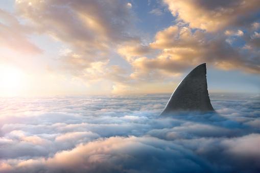Digital Composite「Shark fin above clouds」:スマホ壁紙(15)