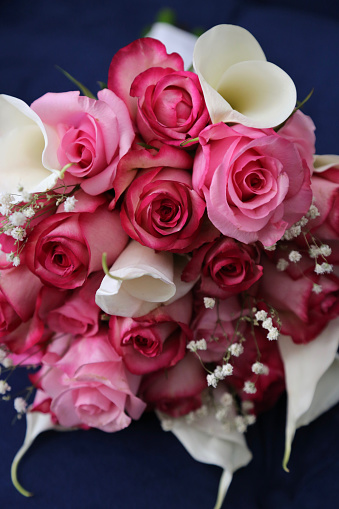 Rose - Flower「Wedding bouquet of pink and red roses, blue background」:スマホ壁紙(14)