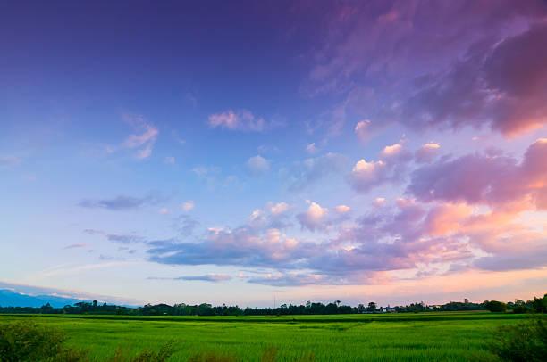 昼から夕へのまとめ:2012年01月30日(壁紙.com)