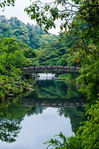 済州島「Stone bridge with flowers in Seogwipo, Jejudo, South Korea」:スマホ壁紙(5)