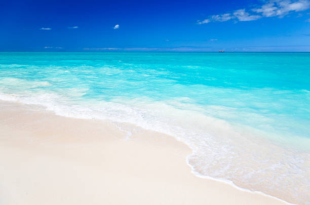 Clean White Caribbean Beach With Blue Sky:スマホ壁紙(壁紙.com)