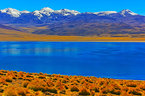 Andean Highlands「Lagunas Miñiques and Miscanti - Lakes and snowcapped Volcanoes mountains - Turquoise lakes and Idyllic Atacama Desert, Volcanic landscape panorama – San Pedro de Atacama, Chile, Bolívia and Argentina border」:スマホ壁紙(17)