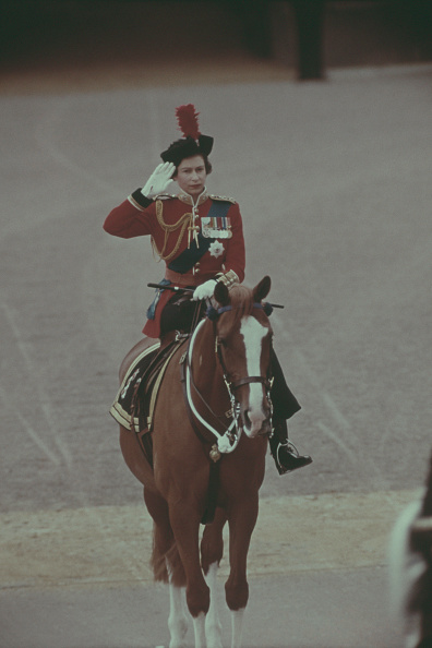 Horse「Trooping the Colour, 1971」:写真・画像(13)[壁紙.com]