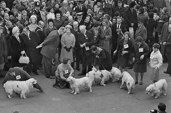 Large Group Of People「Queen Elizabeth II At Crufts」:写真・画像(18)[壁紙.com]