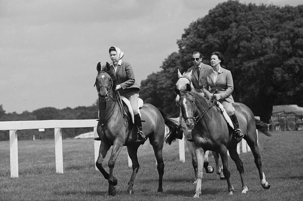Horse「Royal Ride」:写真・画像(1)[壁紙.com]