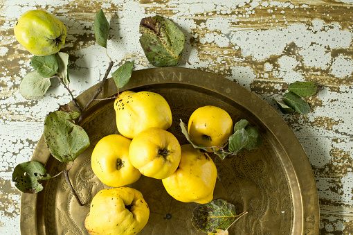 Quince「Fresh quinces(Cydoniaoblonga)on metal tray」:スマホ壁紙(19)
