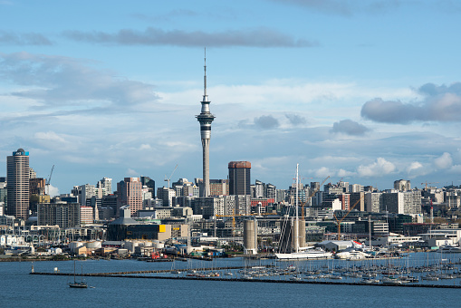 New Zealand Culture「Auckland skyline and Westhaven Marina.」:スマホ壁紙(8)