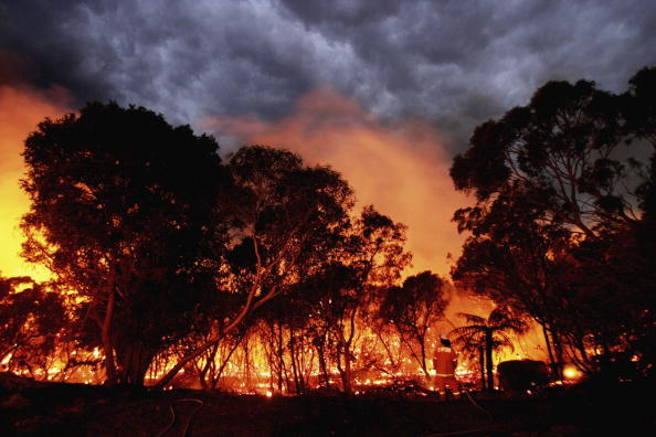 New South Wales「Bushfires Threaten Homes North Of Sydney」:写真・画像(5)[壁紙.com]