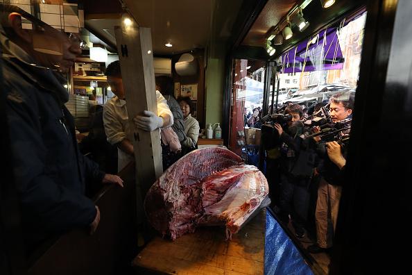 新鮮「Auction-Winning Tuna Displayed At Tokyo Restaurant」:写真・画像(19)[壁紙.com]