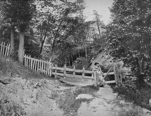 Mountain「In The Berkshire Hills」:写真・画像(0)[壁紙.com]