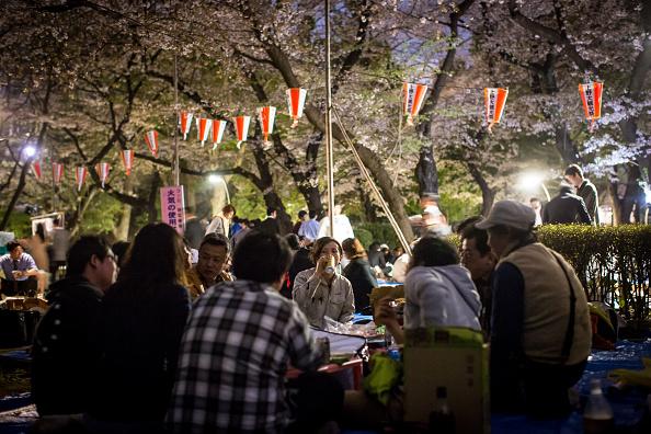 お祭り「Japan's Flower Viewing Tradition」:写真・画像(1)[壁紙.com]