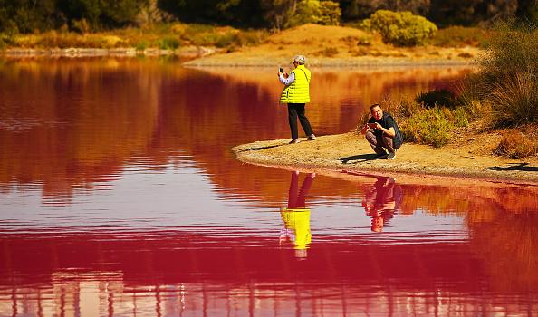 Pink Color「Melbourne's Westgate Park Lake Turns Pink」:写真・画像(12)[壁紙.com]