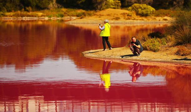 Melbourne's Westgate Park Lake Turns Pink:ニュース(壁紙.com)