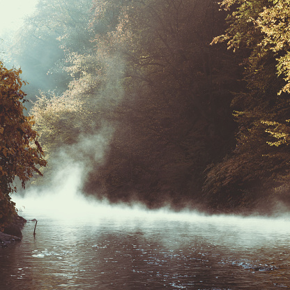 Growth「Germany, Wuppertal, rising fog on river Wupper in the morning」:スマホ壁紙(18)