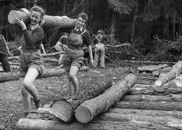 Timber「Timber Corps」:写真・画像(0)[壁紙.com]