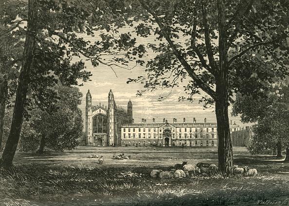 "Tree「Kings College From ""The Backs"" 1」:写真・画像(19)[壁紙.com]"