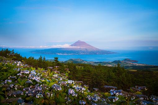 Atlantic Islands「Pico Island, Azores」:スマホ壁紙(5)