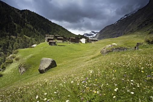Pennine Alps「Alpine fields on Matterhorn, Swiss Alps, Switzerland」:スマホ壁紙(13)