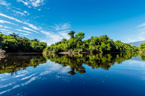アマゾン熱帯雨林「穏やかな海に川の州ベネズエラアマソナス州」:スマホ壁紙(19)