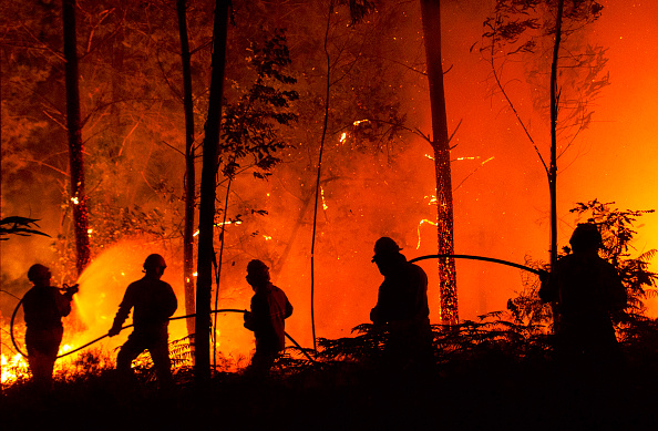 Portugal「Dozens Dead In Forest Fire In Portugal」:写真・画像(0)[壁紙.com]