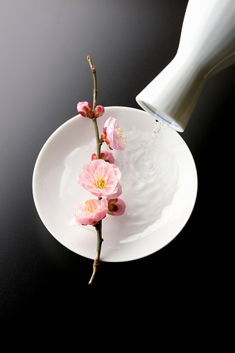 清酒「Sake and plum blossoms」:スマホ壁紙(9)