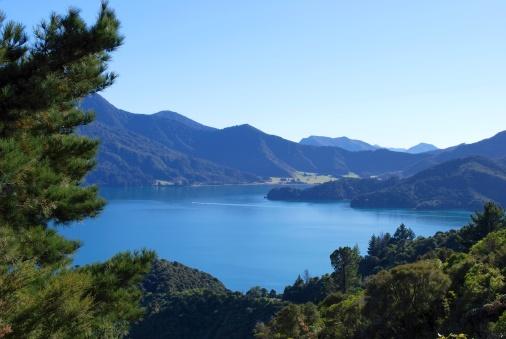 New Zealand Culture「Kenepuru Sound, Marlborough, NZ」:スマホ壁紙(6)