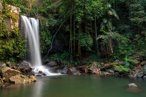 Waterfall「Curtis Falls - Tropical Rainforest Waterfall Australia」:スマホ壁紙(17)