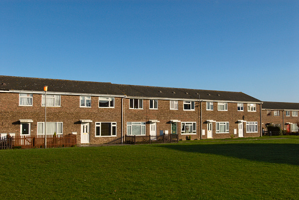 Grass「Council housing estate, Witham, UK」:写真・画像(3)[壁紙.com]