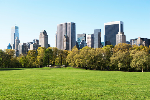 Mid-Atlantic - USA「Sheep meadow in Central Park, New York City, New York State, USA」:スマホ壁紙(0)