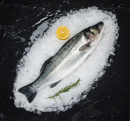 Raw Food「Blue Fish on ice」:スマホ壁紙(13)