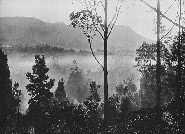 Mystery「'The Early Morning Mist Rising at Nuwara Eliya', c1890,」:写真・画像(19)[壁紙.com]