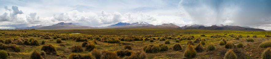 Bolivian Andes「Sajama National Park, Bolivia XXXL Zoom in for details」:スマホ壁紙(0)