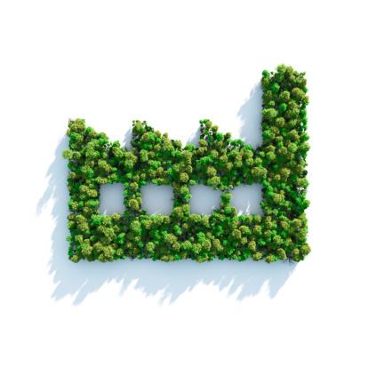 Amazon Rainforest「Green Industry」:スマホ壁紙(18)