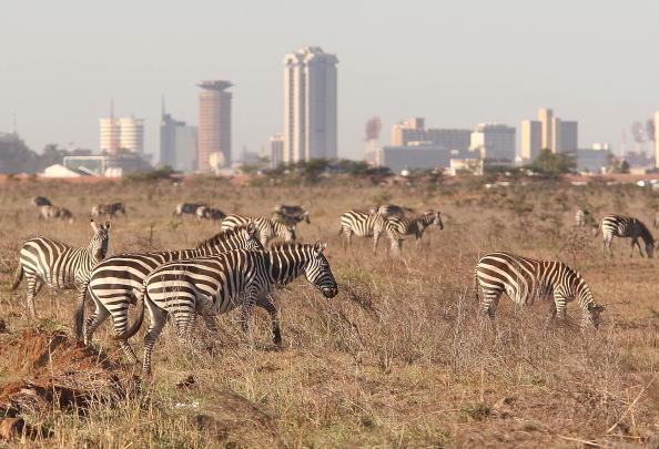 Kenya「Political Stand Off Affects Kenyan Tourism」:写真・画像(14)[壁紙.com]