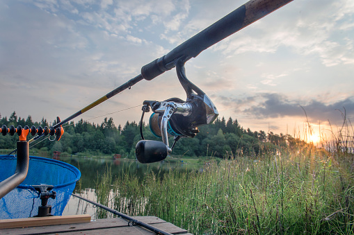 Carp「Rod on the river Bank against the rising sun.」:スマホ壁紙(15)