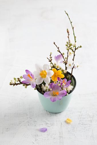 Crocus「Twigs of wild plum and crocus in cup」:スマホ壁紙(13)