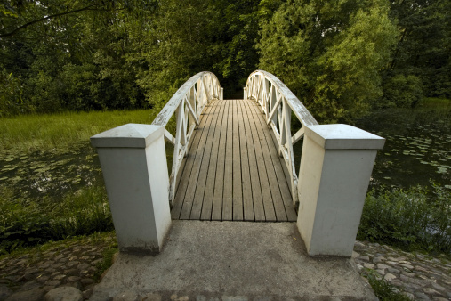 Footbridge「Wooden Footbridge in forest」:スマホ壁紙(4)