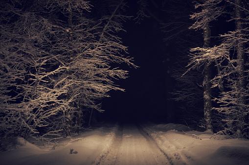 雪景色「深い森」:スマホ壁紙(17)